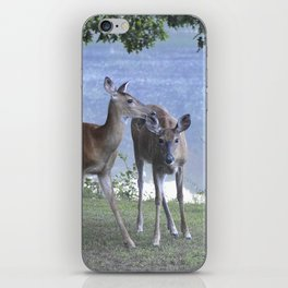 Early Evening Visitors Young Deer -Debra Cortese photo art iPhone Skin
