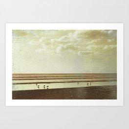 Beach #1 - Lonely beach with seagulls Art Print