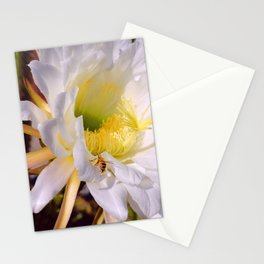 """Cactus Flower And Friend #1"" Photograph Stationery Cards"