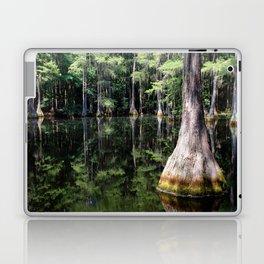 Florida Beauty 4 Laptop & iPad Skin
