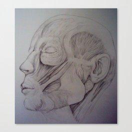 Anatomy -Inspired By Jeno Canvas Print