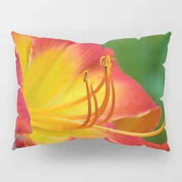 Ruby Spider Day Lily Pillow Sham