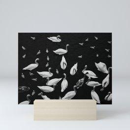 Swan Song Mini Art Print