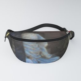 STOP Fanny Pack