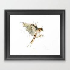 My Sparrow Framed Art Print