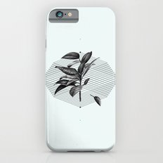 Still Life No.1 Slim Case iPhone 6s