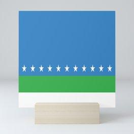Flag of San Jose Costa Rica Mini Art Print
