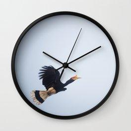 Rhinoceros Hornbill Wall Clock
