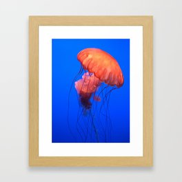 u jelly Framed Art Print