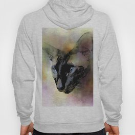Cat 620 Siamese Hoody