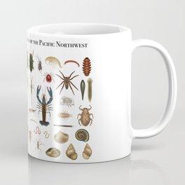 Freshwater Macroinvertebrates of the PNW Coffee Mug