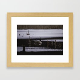 Canadian Geese on frozen lake Framed Art Print