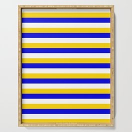 Bosnia Herzegovina Uruguay flag stripes Serving Tray