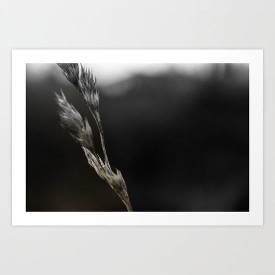Alone in the field Art Print