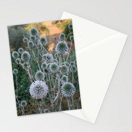 Seed Head Of Leek Flower Allium Sphaerocephalon  Stationery Cards