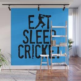 Eat Sleep Cricket Wall Mural
