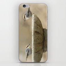 Sweet Duo iPhone & iPod Skin