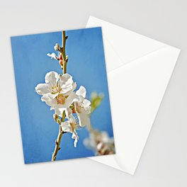 Almond Blossoms in a Clear Blue Sky Stationery Cards