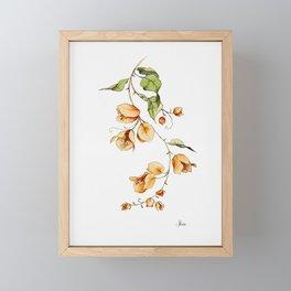 Orange Bougainvillea Illustration Framed Mini Art Print