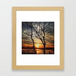 Natural Picture Frame Framed Art Print