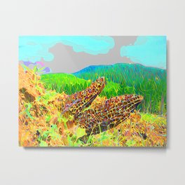 Pretty pretty clouds Metal Print