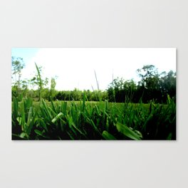 Perfectly Green Canvas Print