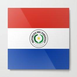 Paraguay Flag Metal Print