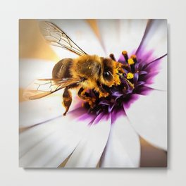 Springtime Honeybee On White African Daisy Metal Print