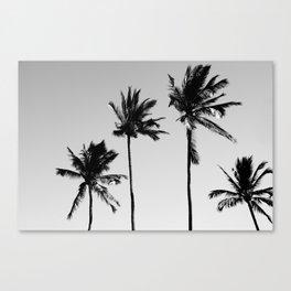cocotier noir Canvas Print