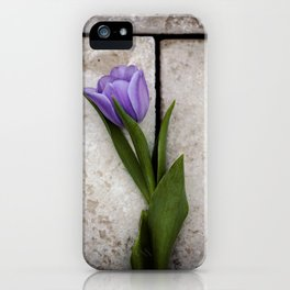 Blue Velvet 3/4 Collection iPhone Case