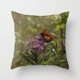 milkweed with wanderer Throw Pillow