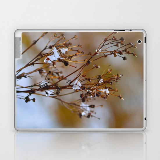 Frosty Days Laptop & iPad Skin