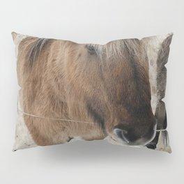 snowy Icelandic horse Pillow Sham