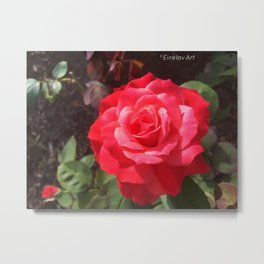 Gift of Passion Metal Print