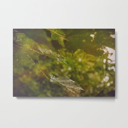 Rainy autumn leaves Metal Print