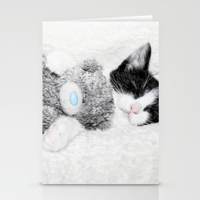 Kitten and teddy Stationery Cards