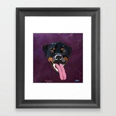 Rottweiler Zues Framed Art Print
