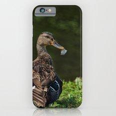 Feathered Mallard Slim Case iPhone 6s