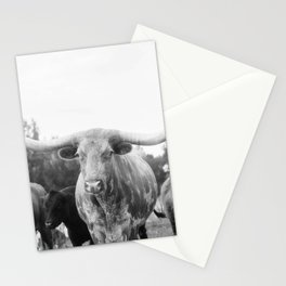 Texas Longhorn and Friends Stationery Cards