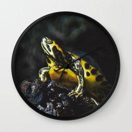 Swamp Turtle Wall Clock
