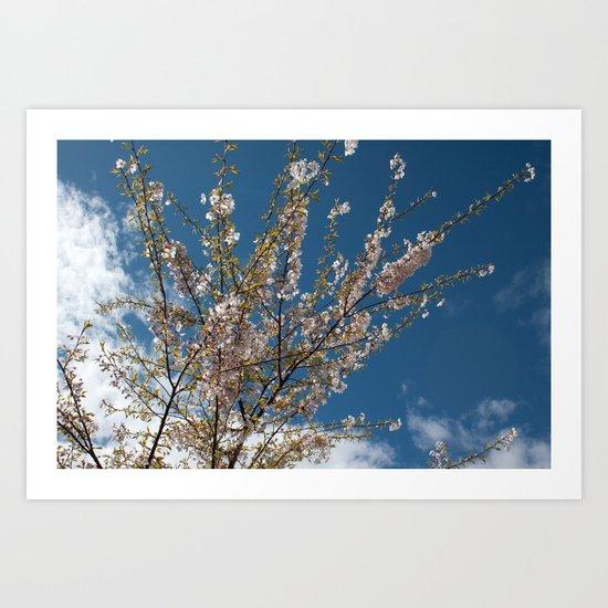 Joy of life! Spring pink cherry blossom tree against blue sky.  Art Print