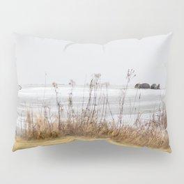 Four Otters Pillow Sham