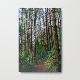 Trees: IV // Oregeon Metal Print