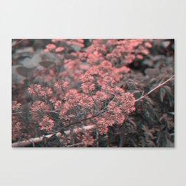 Anaglyph Florals Canvas Print
