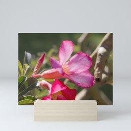 Saigon Flora Mini Art Print
