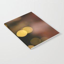 Flying Lightballs Version 2 Notebook