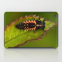 bug iPad Cases featuring Bug by Wealie