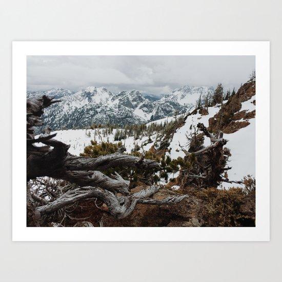 Wenatchee National Forest Art Print