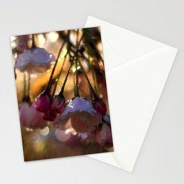 Catch the Morning Light Stationery Cards