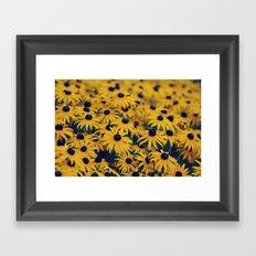 Hypnotizing Summer... Framed Art Print